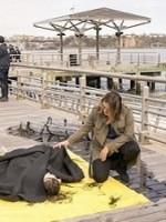 New York Unité Spéciale : Saison 20 Episode 24, End Game